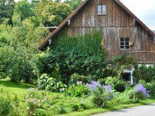 Alternativas no controle de pragas no seu jardim